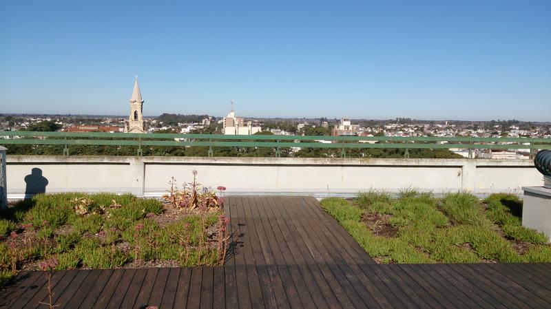 Terraza verde con vista a la Catedral